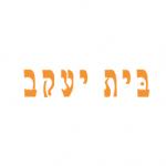 Bais Yaakov Project